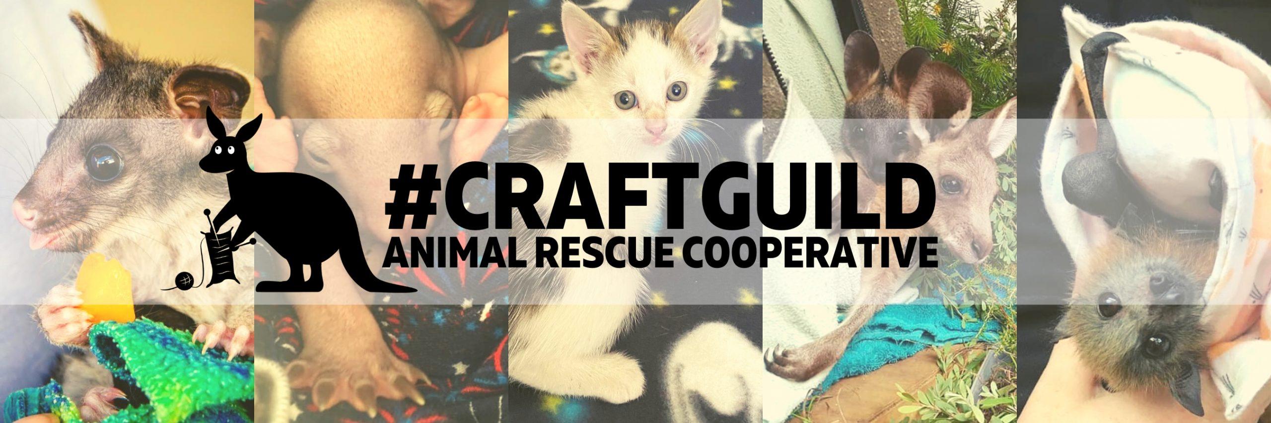 Animal Rescue Cooperative Craft Guild